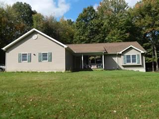 Single Family for sale in 63020 Lake Street, Sturgis, MI, 49091