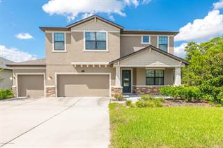 Single Family for sale in 685 Tierra Drive, Spring Hill, FL, 34609