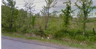 Farm And Agriculture for sale in LOT 154 GARNER Road, Niagara Falls, Ontario, L2E6S4