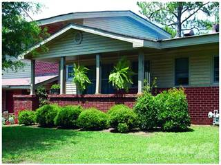 Houses Apartments For Rent In Cane Creek Al Point2 Homes