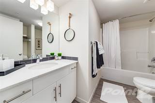 Apartment for rent in McCall Landing - Shiraz Style 2 Bd 1 Ba, Calgary, Alberta