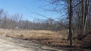 Land for sale in vl LAURA Lane, Mundy, MI, 48507