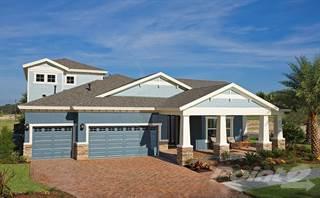 Single Family for sale in 4252 Glade Wood Loop, Jay B. Starkey, FL, 34655