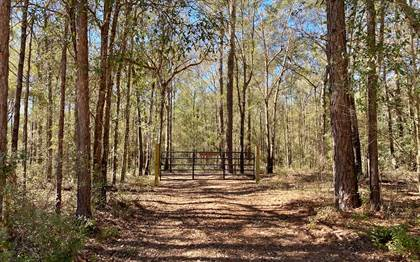 Lots And Land for sale in NE NIXON WAY, Madison, FL, 32340