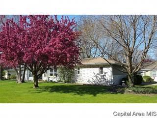 Single Family for sale in 301 CASSON ST, Williamsville, IL, 62693