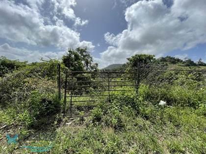Residential Property for sale in Carr 568 KM 19.5, Corozal, PR, 00783