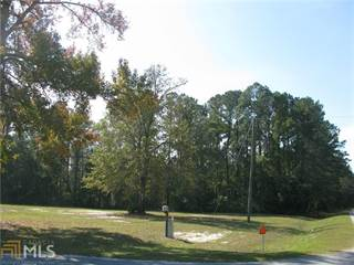 Farm And Agriculture for sale in 2111 Ga Hwy 119 S, Guyton, GA, 31312