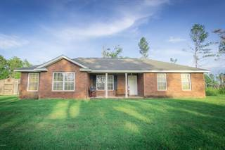 Single Family for sale in 2755 Perry Road, Greater Alford, FL, 32431