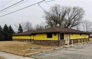 Comm/Ind for sale in 5359 COUNTY LINE Road, Casco, MI, 48064