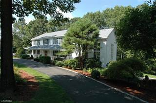 Single Family for sale in 4 PETER DR, Greater Panther Valley, NJ, 07840