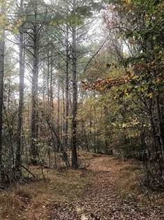 Lots And Land for sale in NEW HOPE RD, Coffeeville, MS, 38922