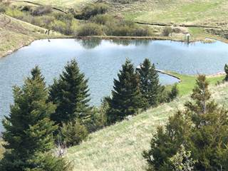 Farm And Agriculture for sale in 776 Frontage Rd, Livingston, MT, 59047