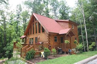 Residential Property for sale in 537 Cantrell Mountain Road, Dunns Rock, NC, 28712