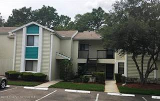 Condo for sale in 8033 Picketts Court, North Weeki Wachee, FL, 34613