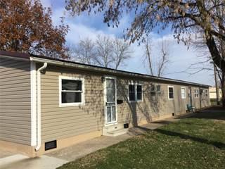 Multi-family Home for sale in 0 427 & 434 East Drive, Marissa, IL, 62257