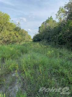 Lots And Land for sale in FM 616, Francitas, TX, 77961