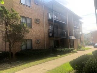 Single Family for rent in 8741 West Summerdale Avenue 2E, Chicago, IL, 60656