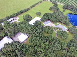 Farm And Agriculture for sale in 39331 Lake Burns Road, Umatilla, FL, 32784