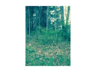 Land for sale in 0 Clearview Avenue, Torrington, CT, 06790