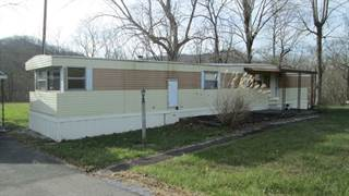 Single Family for sale in 12828 morehead rd, Wallingford, KY, 41093