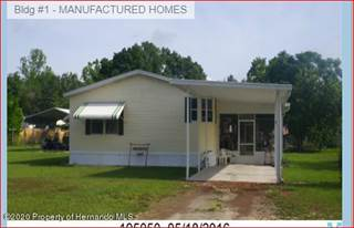 Residential Property for rent in 16143 Pensacola Street, Spring Hill, FL, 34604