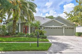 Single Family for sale in 19115 AUTUMN WOODS AVENUE, Tampa, FL, 33647