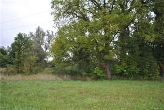 Land for sale in VL GREGORY, Conway, MI, 48836