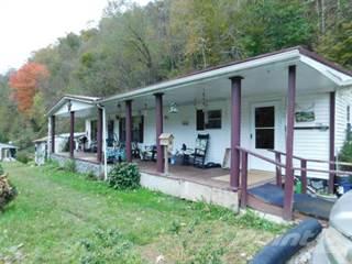 Residential Property for sale in 3799 Poplar Gap, Glen Fork, WV, 25845
