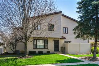 Condo for sale in 242 East Woodlawn Road, New Lenox, IL, 60451