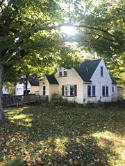 Single Family for sale in 114 Griswold Street, Hart, MI, 49420