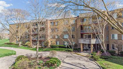 Residential Property for sale in 945 East Kenilworth Avenue 314, Palatine, IL, 60074
