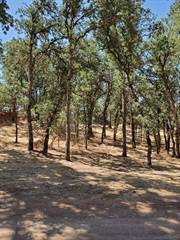 Land for sale in 16017 30th Ave., Clearlake, CA, 95422