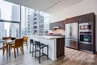 Apartment for rent in Optima Signature, Chicago, IL, 60611