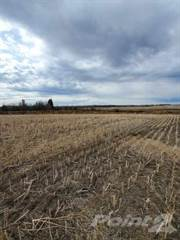 Farm And Ranch for sale in RM 494 Canwood - 160 acres, Canwood, Saskatchewan