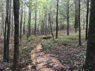 Lots And Land for sale in Marina road, Russellville, AR, 72802