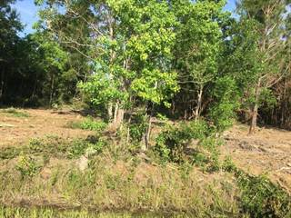 Land for sale in 00 35th St., East Ansley, MS, 39520