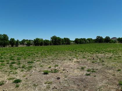 Farm And Agriculture for sale in 60 Acequia Road, Pena Blanca, NM, 87041