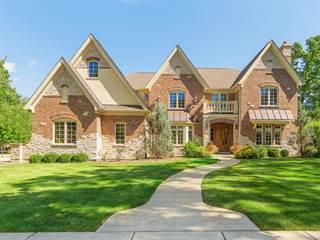 Single Family for sale in 301 Blackstone Avenue, Willow Springs, IL, 60480