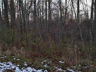 Land for sale in Gardner Rd, Dorset, OH, 44032