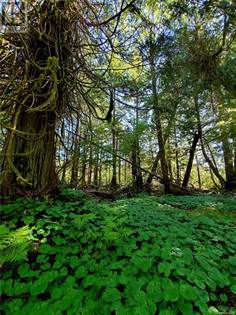 Vacant Land for sale in 1388 Chesterman Beach Rd, Tofino, British Columbia, V0R2Z0