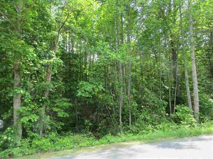 Lots And Land for sale in TBD SIMMONS GAP RD 0090000014E3, Free Union, VA, 22940