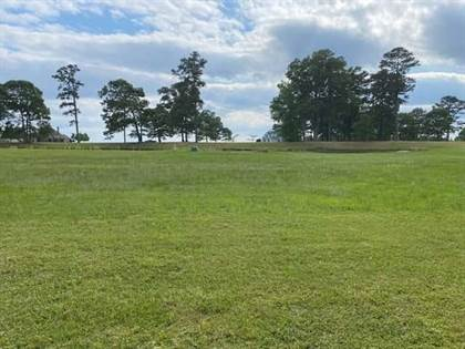 Lots And Land for sale in Lot 116 Mallard Cove Road, Edenton, NC, 27932