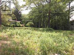 Land for sale in 0 Mineola Road, Mississauga, Ontario, L5G2X4