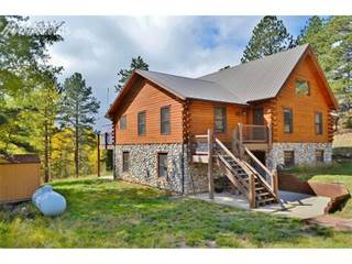 Single Family for sale in 4571 W Highway 24, Florissant, CO, 80816