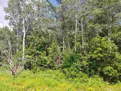 Lots And Land for sale in TBD M94, Manistique, MI, 49854