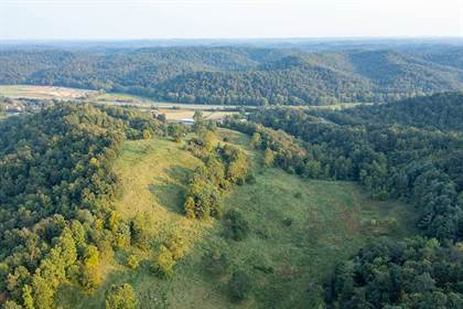 Lots And Land for sale in 3710 US 60 West, Grayson, KY, 41143