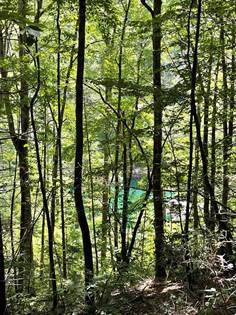 Lots And Land for sale in 00 Fontana Forest 44, Robbinsville, NC, 28771