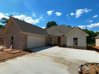 Residential Property for sale in 273 BUTTONWOOD LANE, Canton, MS, 39046