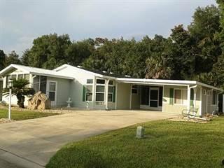 Residential Property for sale in 10 Winthrop Lane, Flagler Beach, FL, 32136