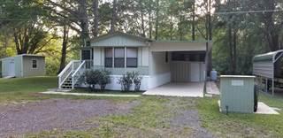 Residential Property for sale in 16365 Daviston Lane, Istachatta, FL, 34601